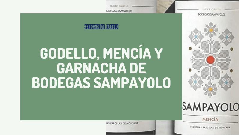 Godello, Mencía y Garnacha de Bodegas Sampayolo