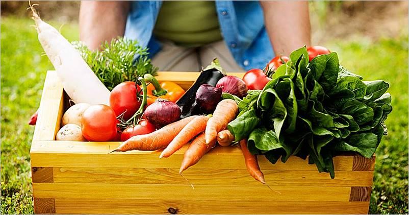 Beneficios de consumir productos locales del medio rural